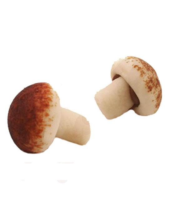 marsepeinen paddenstoeltjes